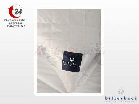 Billerbeck Chantal félpárna 50x70 cm