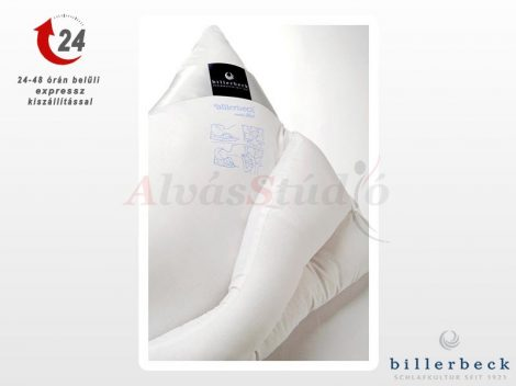 Billerbeck tarkótámasztó párna 50x70 cm