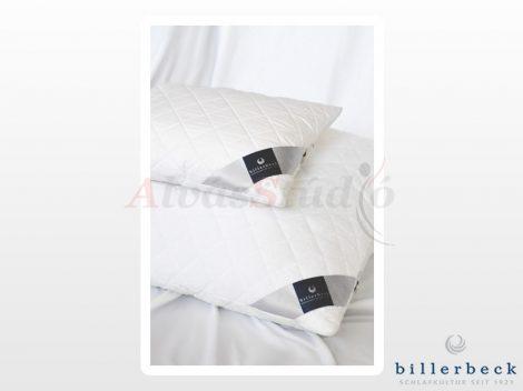 Billerbeck Sanitex kispárna 36x48 cm