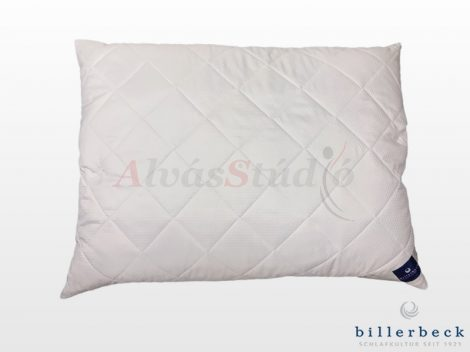 Billerbeck GO FREE pillow - large
